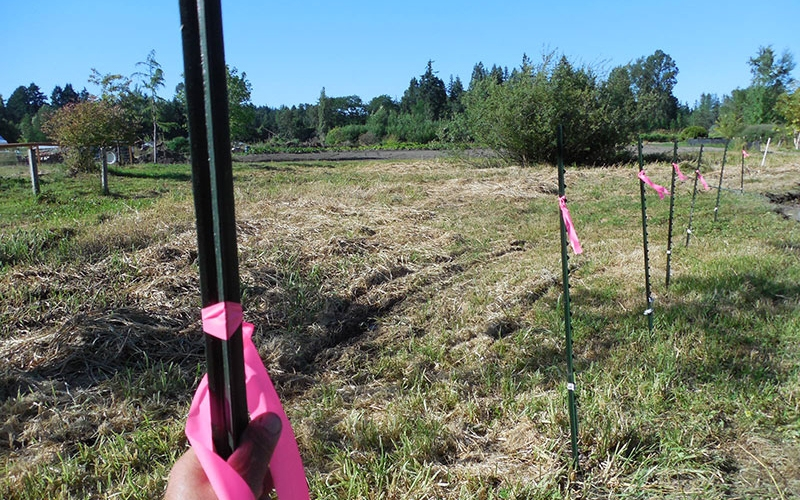 Uncle Harry's Farm: Silt Fence, Plowing, and our New Well